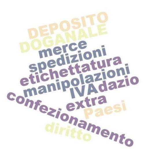 deposito-doganale-1-550x559